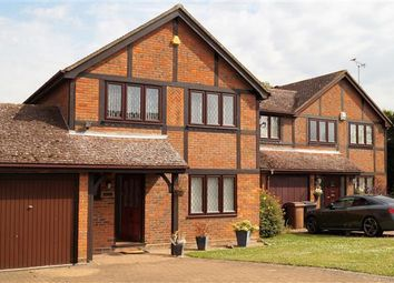 Thumbnail 4 bed detached house to rent in Little Fields, Danbury, Chelmsford