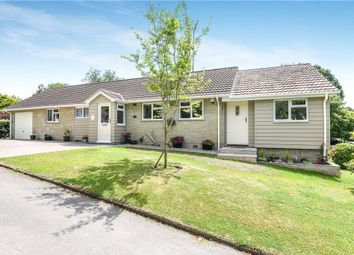 Thumbnail 3 bed detached bungalow for sale in North Street, Fontmell Magna, Shaftesbury
