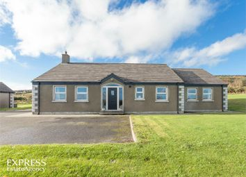 Thumbnail 4 bed detached bungalow for sale in Ballyculter Road, Downpatrick, County Down