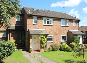 Thumbnail 4 bed terraced house for sale in Appledown Close, Alresford