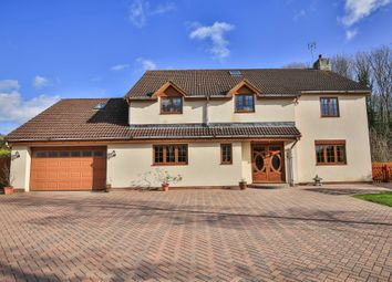Thumbnail 5 bed detached house for sale in Lake House, Crick, Caldicot