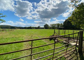 Thumbnail Equestrian property to rent in Woodmansgreen, Linch, Liphook