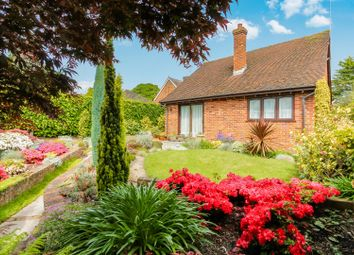 Thumbnail 3 bed detached bungalow for sale in Andover Road, Tivoli, Cheltenham