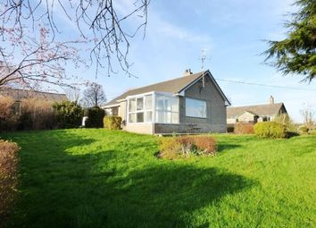 Thumbnail 3 bed detached bungalow to rent in Greenacres, Bonningate, Kendal