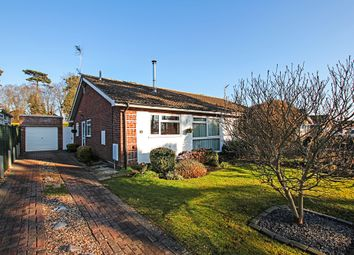 Thumbnail 3 bed semi-detached bungalow for sale in Suffolk Way, Newmarket