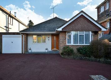 Thumbnail 2 bed bungalow to rent in Tredcroft Road, Hove