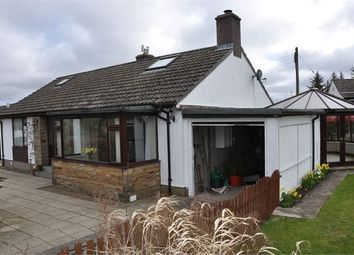 Thumbnail 3 bedroom detached bungalow for sale in Scarberry, Middle Park, Alston
