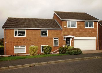 Thumbnail 4 bed detached house for sale in Bankside, Morpeth
