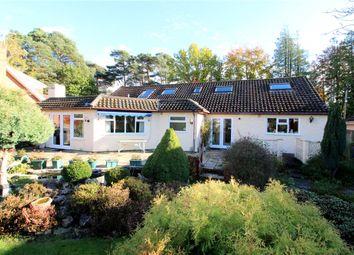 Thumbnail 4 bed detached bungalow for sale in West Moors, Ferndown, Dorset