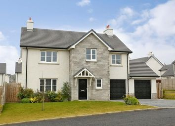 Thumbnail 4 bedroom detached house to rent in Deeside Brae, Aberdeen