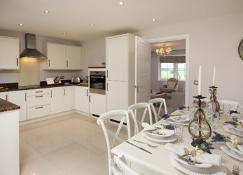 "Thumbnail 4 bed detached house for sale in ""Guisborough"" at Hampton Dene Road, Hereford"