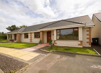 Thumbnail 2 bed semi-detached bungalow to rent in Hair Court, Horncliffe, Berwick-Upon-Tweed