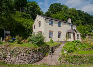 Thumbnail 4 bed cottage for sale in Symonds Yat, Ross-On-Wye