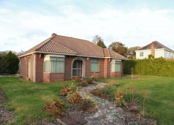 Thumbnail 3 bedroom bungalow to rent in Brook Avenue, Warsash, Southampton