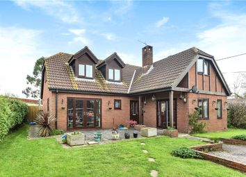 Thumbnail 4 bed detached house for sale in Willhay Lane, Axminster, Devon