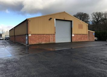 Thumbnail Light industrial to let in Unit 3 Park Road Industrial Estate, Rhosymedre, Wrexhxam