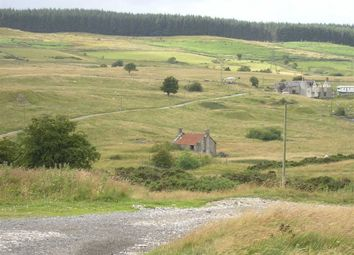 Thumbnail Land for sale in Mountain Road, Minera, Nr Wrexham