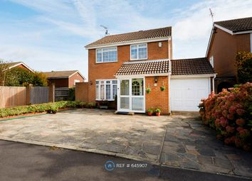 Thumbnail 4 bed detached house to rent in Red Cedars Road, Orpington