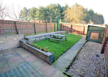 Thumbnail 2 bed terraced house to rent in Saxon Green, Escomb, Bishop Auckland