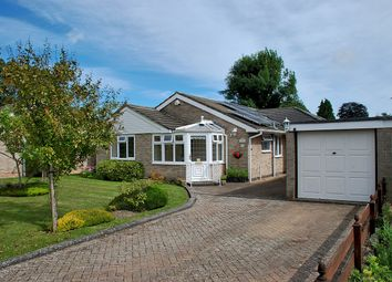Thumbnail 3 bed detached bungalow for sale in Wiltshire Gardens, Bransgore, Christchurch