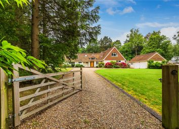 Thumbnail 5 bed detached house for sale in Crooksbury Road, Farnham, Surrey