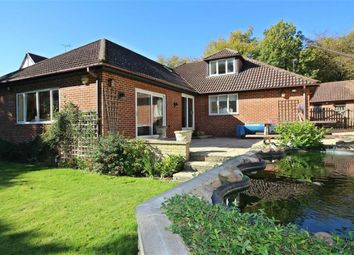 Thumbnail 4 bed detached bungalow for sale in Burnham Green Road, Welwyn, Welwyn, Hertfordshire