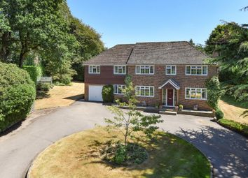 Thumbnail 6 bedroom detached house for sale in Red Hill, Medstead, Alton