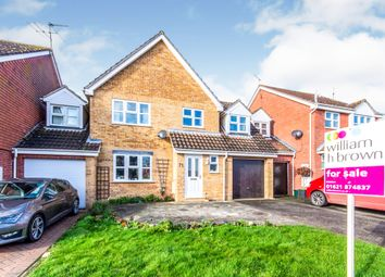 Thumbnail 4 bed link-detached house for sale in Longship Way, Maldon