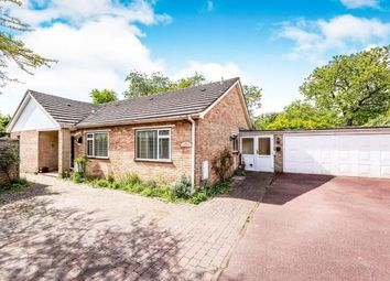 Thumbnail 2 bed bungalow for sale in Epsom, Surrey