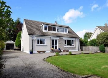 Thumbnail 4 bed detached house for sale in Station Road, Newtonmore