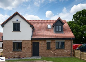 Thumbnail 4 bed detached house for sale in Hayfield, Greenfield Road, Flitton