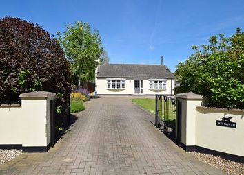 Thumbnail Detached bungalow for sale in Millmoor Lane, Newton Poppleford, Sidmouth