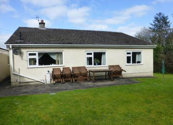 Thumbnail 3 bed bungalow to rent in Brynglas Crescent, Capel Dewi Road, Llangunnor