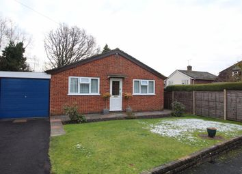 Thumbnail 2 bed bungalow for sale in Nutbourne, Farnham