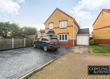 Thumbnail 4 bedroom detached house to rent in Lennox Drive, Wickford, Essex
