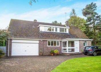 Thumbnail 5 bedroom detached house for sale in Edge Hill, Ponteland, Newcastle Upon Tyne, Northumberland
