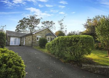 Thumbnail 3 bed bungalow for sale in Crowlea Road, Longhoughton, Northumberland
