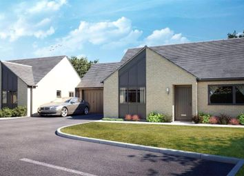 Thumbnail 2 bed detached bungalow for sale in South Hill Road, Callington, Cornwall