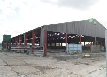 Thumbnail Commercial property to let in Howe Street, Finchingfield, Braintree