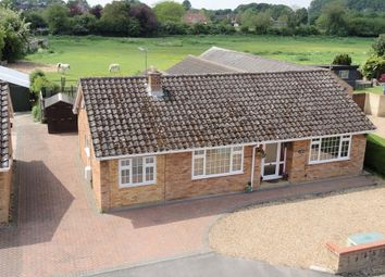 Thumbnail 4 bed detached bungalow for sale in Pound Lane, Isleham