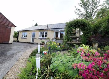 Thumbnail 2 bed bungalow for sale in Maes Yr Awel, Aberystwyth, Ceredigion