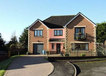 Thumbnail 4 bed detached house for sale in Dol Yr Onnen, Monument Hill, Carmarthen