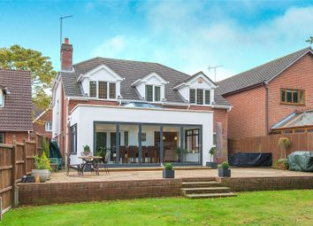 Thumbnail 5 bedroom detached house for sale in Shelley Road, Hutton, Essex