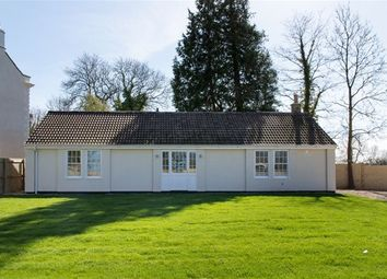 Thumbnail 3 bed detached bungalow for sale in Chilcompton, Somerset