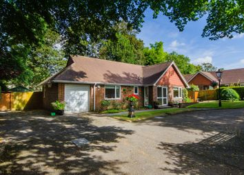 Thumbnail 3 bed bungalow for sale in Holly Close, Sutton
