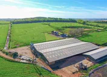 Thumbnail 4 bedroom detached house for sale in Stoneybrook Farm, Lees Hill, Brampton, Cumbria