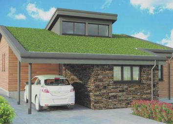 Thumbnail 3 bedroom bungalow for sale in Beech Meadow, Chilsworthy, Holsworthy