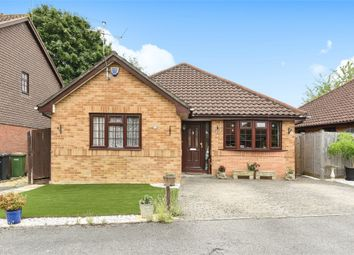 Thumbnail 2 bed bungalow to rent in Monmouth Close, Valley Park, Chandler's Ford, Hampshire