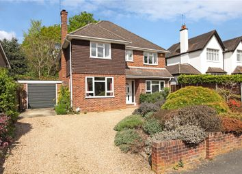 Thumbnail 4 bed detached house for sale in Firwood Drive, Camberley, Surrey