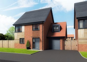 Thumbnail 4 bed detached house for sale in Maple Park, Long Stratton, Norwich